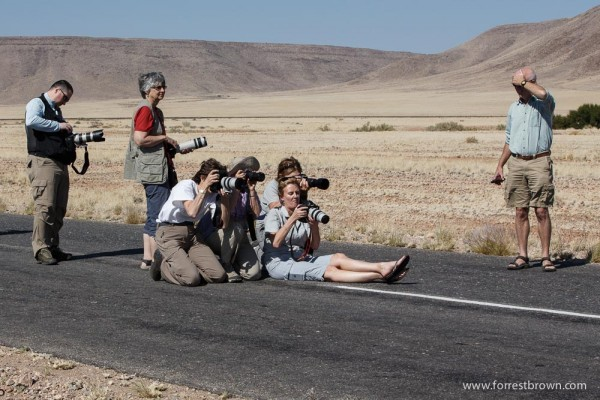 Photographers Stop To play In The Traffic